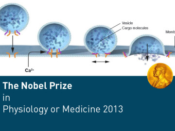 2013 Nobel Prize in Physiology or Medicine